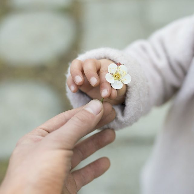 Parent and child handing small white flowers